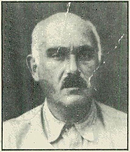 מולנר ניקולה