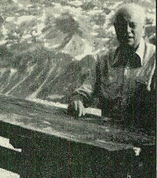 ברגהולד צבי